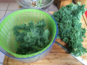 cutting-up-the-kale.jpg